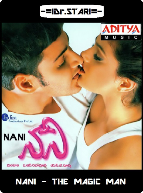 Naani (2018) Hindi Dubbed 720p UNCUT HDRip 1.4GB & 350MB x264 MKV
