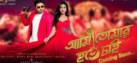 Ami Tomar Hote Chai 2019 Bangla Full Movie 720p HDRip 700MB x264 MKV