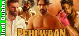 Pailwaan 2019 Hindi Dubbed Movie 720p HDRip 700MB x264 MKV Download