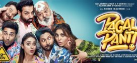 Pagalpanti (2019) Hindi Movie 720p HDRip 1.2GB | 350MB ESubs Download