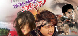 Poloke Poloke Tomake Chai (2020) Bangla Full Movie 720p BluRay 1.5GB | 350MB MKV Download
