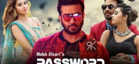 Password 2020 Bioscope Original Bangla Movie WEB-Rip AAC x264 700MB MKV