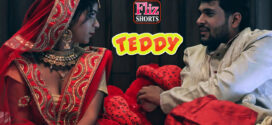 18+ Teddy 2020 Flizmovies Hindi Short Film 720p HDRip 350MB x264 AAC